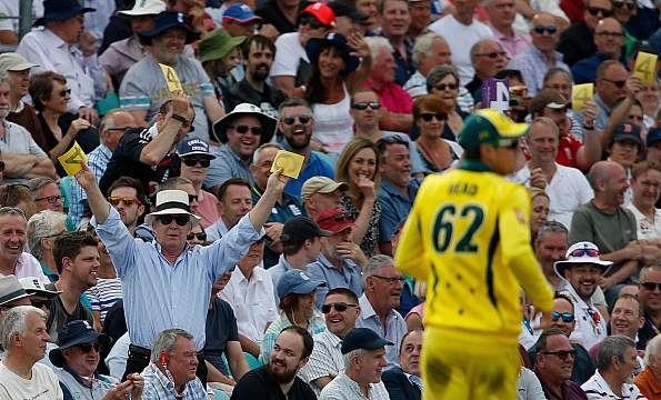 cricket austrelia
